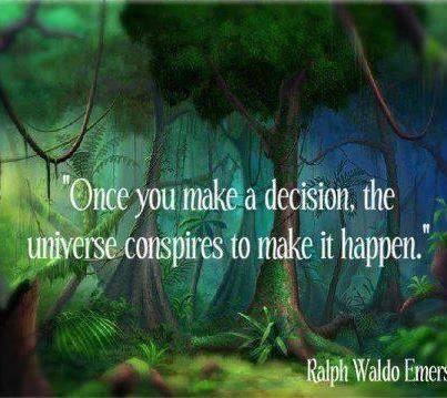 The Universe Once You Decide